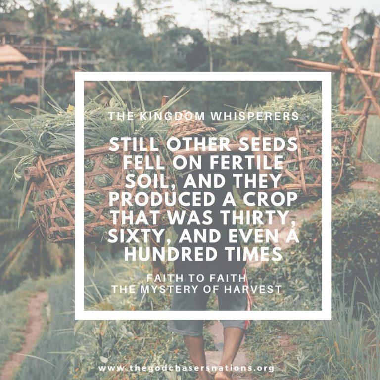 Faith to Faith The Mystery of Harvest